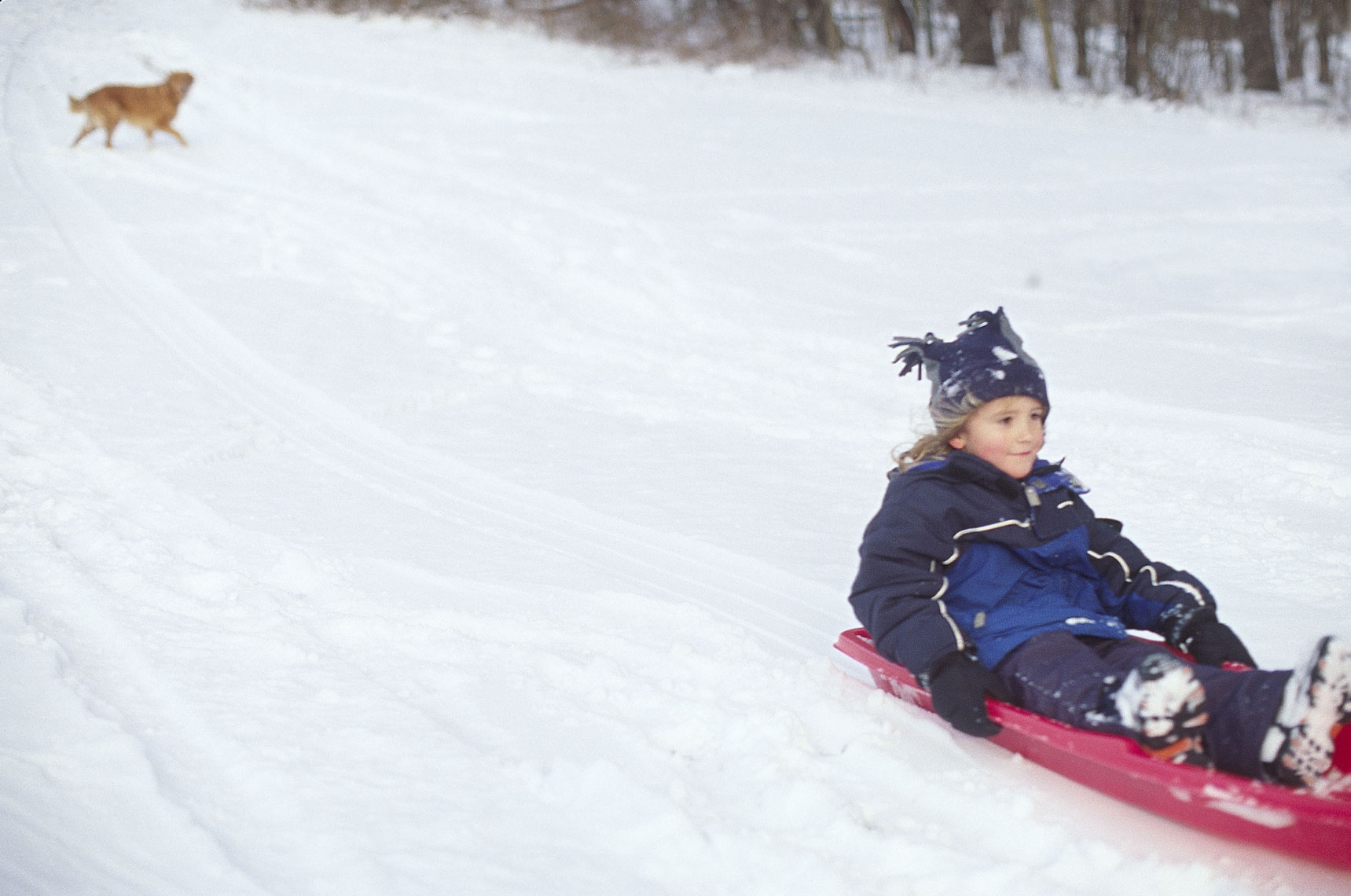 Environmental Lifestyle portrait of boy sledding in winter